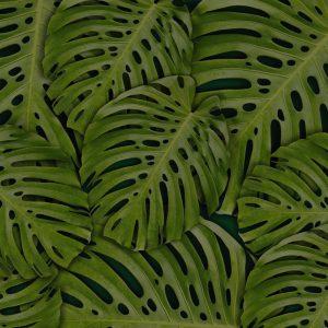 Feuilles tropicales pour une décoration jungle